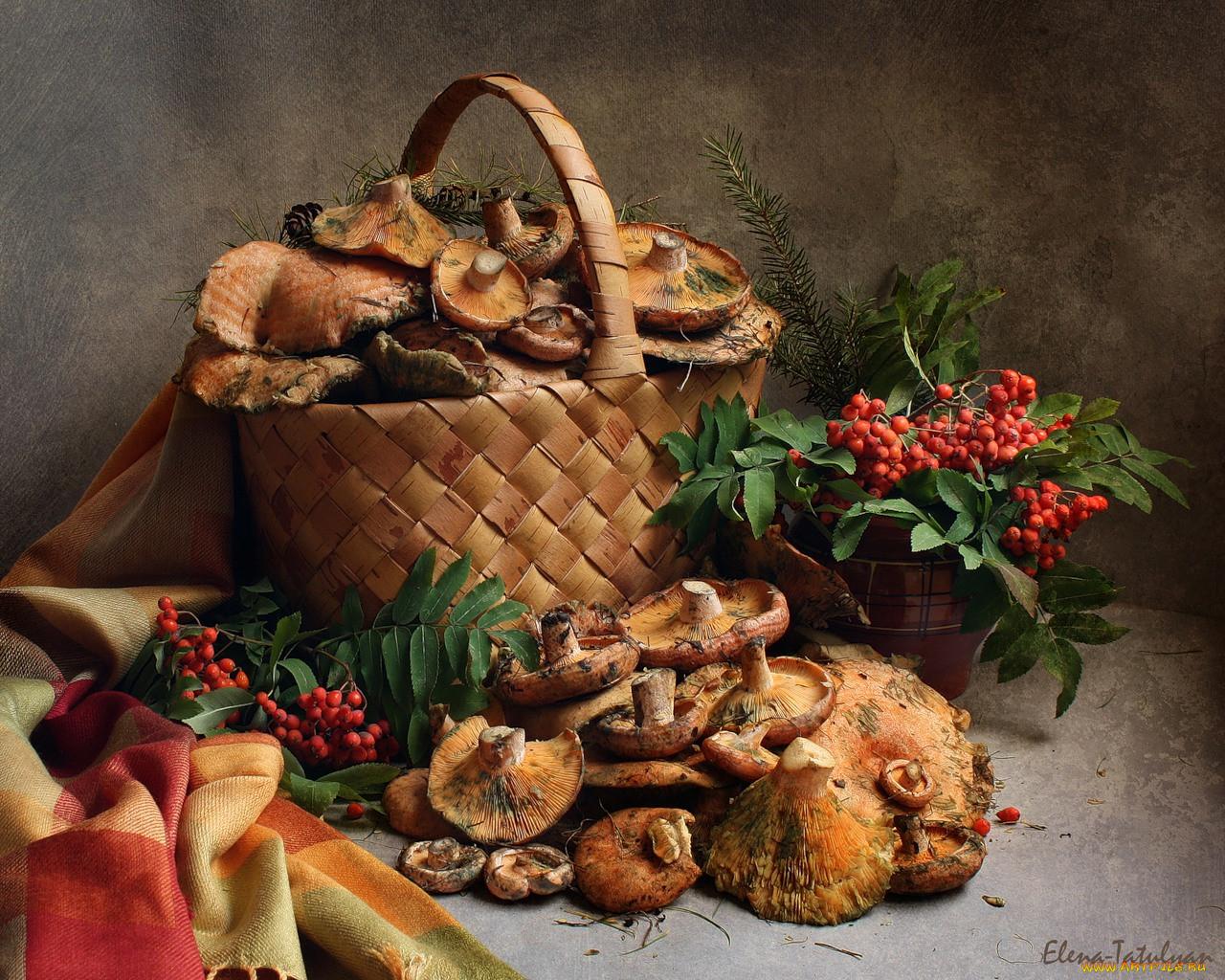 Фото осенние грибы в корзинке 4